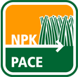 PACE icon