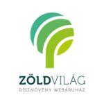 Tarkalevelű nagy télizöld meténg virág, levél