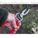 MUTA metszőolló, kovácsolt hagyományos típusú használatban