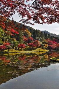 Mérsékelt övi díszkert kép