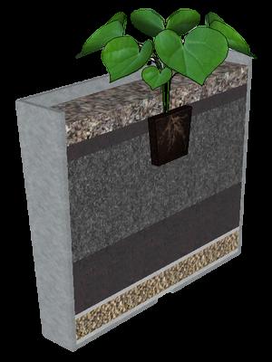 Balkonláda beültetés növénnyel kép