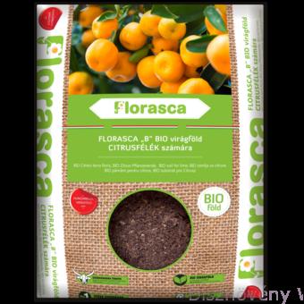 BIO Florasca citrusföld