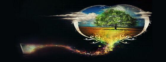 Dísznövény Webáruház kép