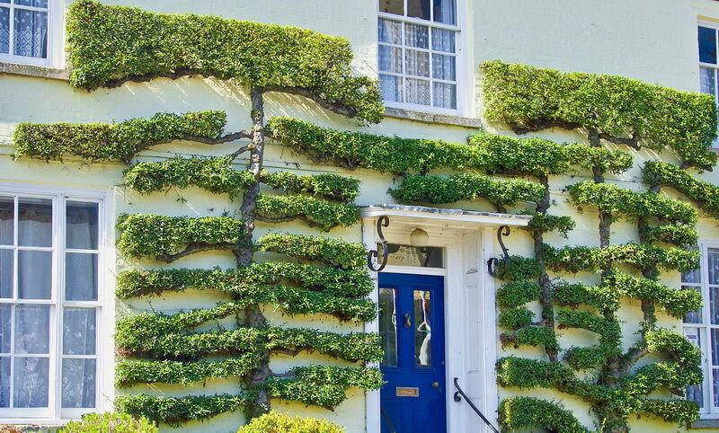 Topiary díszfa alkotás kép