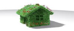 Dísznövény-ház