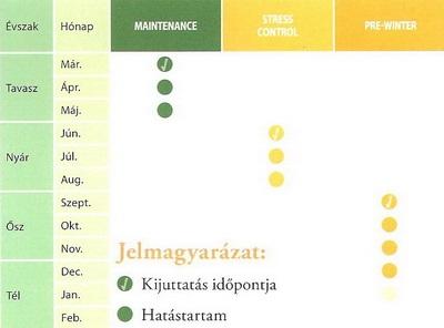 Program táblázat